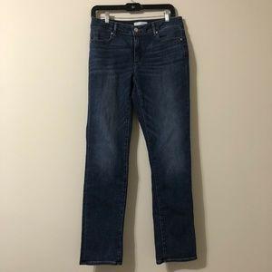 Ann Taylor Loft Jean Size 28 6 Blue Curvy Straight